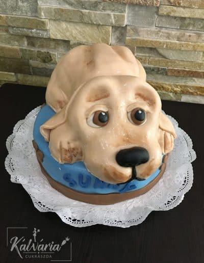 forma torta16