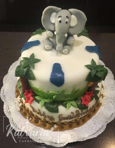 forma torta30